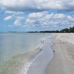 The quiet southern end of Siesta Key where there are more birds than tourists