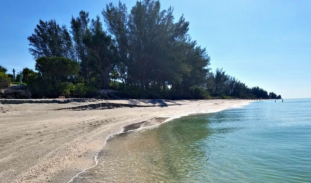 A shady beach on Casey Key