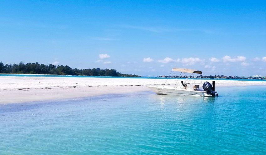 Sand Dollar Island Siesta Key