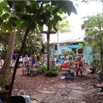"Enjoy old Florida atmosphere in the ""back yard"" at Owen's Fish Camp in Sarasota"